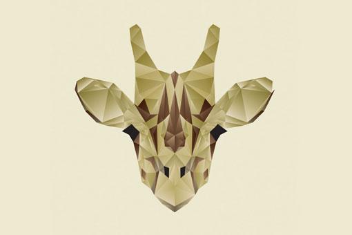 The Animals 03