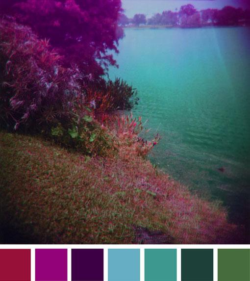 Color Happy 56