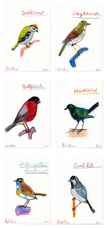 robertclarke_birds
