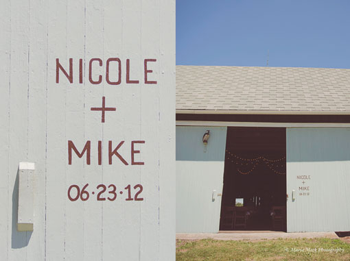 nicolemike_wedding_15