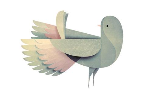 AndrewLyons_Birds_01