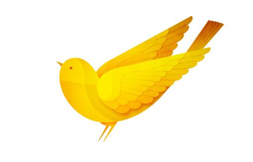 AndrewLyons_Birds_02