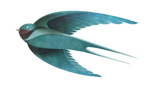 AndrewLyons_Birds_08