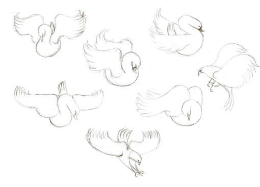 AndrewLyons_Birds_12
