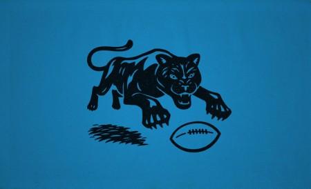 Matt Stevens: Carolina Panthers / on Design Work Life