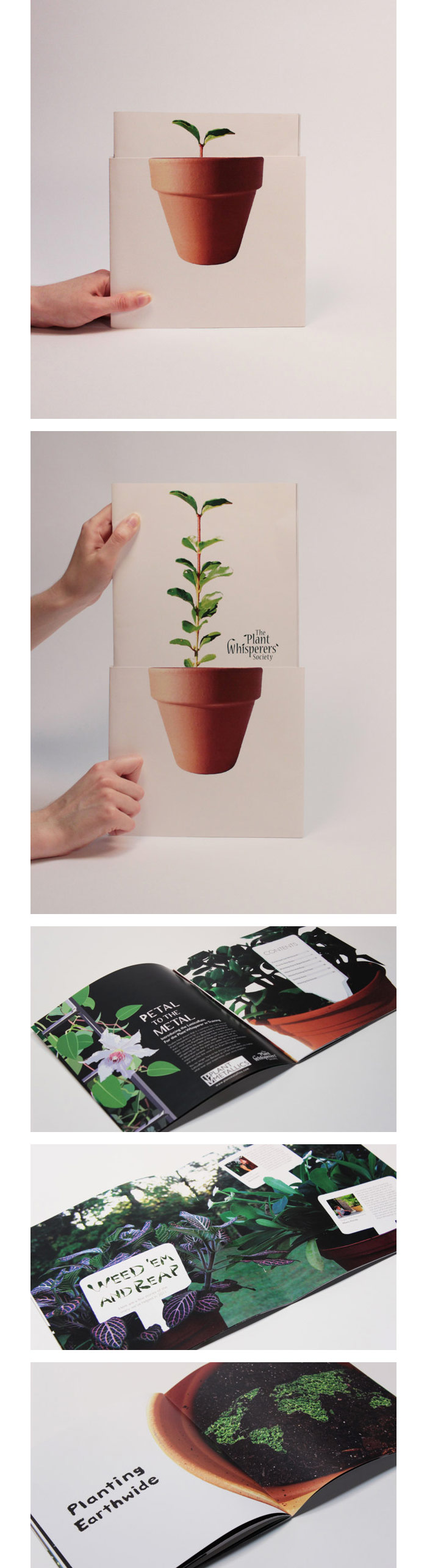 Jenna Russell / Annual Report concept - The Plant Whisperers Society