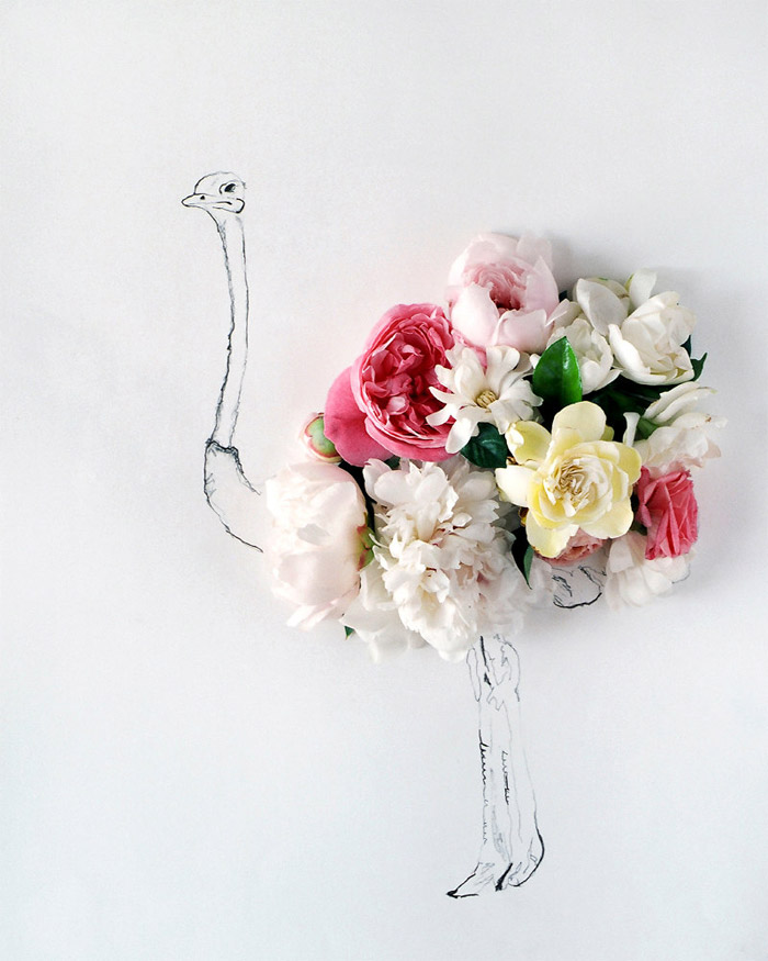 Kari Herer / Illustration & floral arrangement
