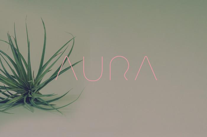 Will Miller: Aura Natural Pet / on Design Work Life